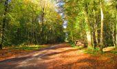Randonnée Marche LONGPONT - en forêt de Retz_67_ballade (1) en toute saison - Photo 31