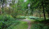 Randonnée Marche LONGPONT - en forêt de Retz_67_ballade (1) en toute saison - Photo 15