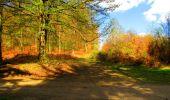 Randonnée Marche LONGPONT - en forêt de Retz_67_ballade (1) en toute saison - Photo 12