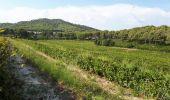 Randonnée Marche SAINT-CYR-SUR-MER - calanque du cap d'Alon - sentier des vignes - sentier côtier - Photo 16