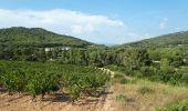 Randonnée Marche SAINT-CYR-SUR-MER - calanque du cap d'Alon - sentier des vignes - sentier côtier - Photo 15