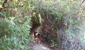 Randonnée Marche SAINT-CYR-SUR-MER - calanque du cap d'Alon - sentier des vignes - sentier côtier - Photo 14