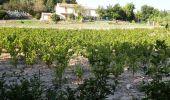 Randonnée Marche SAINT-CYR-SUR-MER - calanque du cap d'Alon - sentier des vignes - sentier côtier - Photo 13