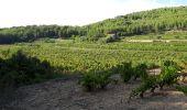 Randonnée Marche SAINT-CYR-SUR-MER - calanque du cap d'Alon - sentier des vignes - sentier côtier - Photo 12