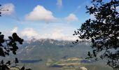 Trail Other activity VASSIEUX-EN-VERCORS - Boucle du but St Genix - Photo 13