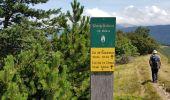 Trail Other activity VASSIEUX-EN-VERCORS - Boucle du but St Genix - Photo 7