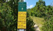 Trail Other activity VASSIEUX-EN-VERCORS - Boucle du but St Genix - Photo 6