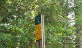 Trail Other activity VASSIEUX-EN-VERCORS - Boucle du but St Genix - Photo 5