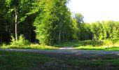 Randonnée Marche LONGPONT - en forêt de Retz_69_ballade (3) en toute saison - Photo 15