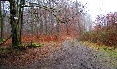Randonnée Marche LONGPONT - en forêt de Retz_69_ballade (3) en toute saison - Photo 7