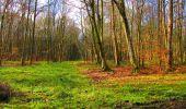 Randonnée Marche LONGPONT - en forêt de Retz_69_ballade (3) en toute saison - Photo 17