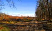 Randonnée Marche LONGPONT - en forêt de Retz_69_ballade (3) en toute saison - Photo 42