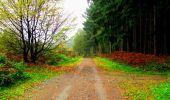 Randonnée Marche LONGPONT - en forêt de Retz_69_ballade (3) en toute saison - Photo 3