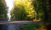 Randonnée Marche LONGPONT - en forêt de Retz_69_ballade (3) en toute saison - Photo 34