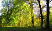 Randonnée Marche LONGPONT - en forêt de Retz_69_ballade (3) en toute saison - Photo 1