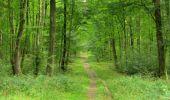 Randonnée Marche LONGPONT - en forêt de Retz_69_ballade (3) en toute saison - Photo 25