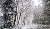 Randonnée Marche LONGPONT - en forêt de Retz_69_ballade (3) en toute saison - Photo 9