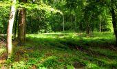 Randonnée Marche LONGPONT - en forêt de Retz_69_ballade (3) en toute saison - Photo 31