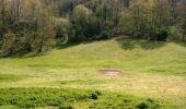 Randonnée Marche IGON - Boucle de l'Ouzom à Asson - Photo 2