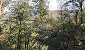 Randonnée Marche LAIFOUR - Laifour 21,7 km - Photo 12