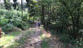 Randonnée Marche LAIFOUR - Laifour 21,7 km - Photo 7