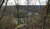 Randonnée Marche LAIFOUR - Laifour 21,7 km - Photo 4