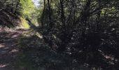 Randonnée Marche LAIFOUR - Laifour 21,7 km - Photo 3