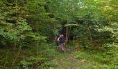 Randonnée Marche SALVEZINES - La forêt d  en Malo depuis le Caunil (11) - Photo 10