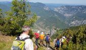 Randonnée Marche SALVEZINES - La forêt d  en Malo depuis le Caunil (11) - Photo 5