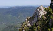 Randonnée Marche SALVEZINES - La forêt d  en Malo depuis le Caunil (11) - Photo 15