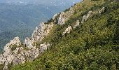 Randonnée Marche SALVEZINES - La forêt d  en Malo depuis le Caunil (11) - Photo 14