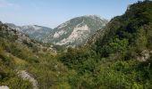 Randonnée Marche SALVEZINES - La forêt d  en Malo depuis le Caunil (11) - Photo 3