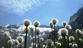 Randonnée Marche AUSSOIS - Tour des Glaciers de la Vanoise - Refuge du Fonds d'Aussois - Refuge de la Valette - Photo 4