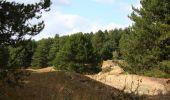 Randonnée Marche DANNES - Mont St Frieux - Côte d'Opale - Photo 3