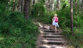 Randonnée Marche DANNES - Mont St Frieux - Côte d'Opale - Photo 2