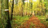 Randonnée V.T.T. VIGY - Forêt de St Hubert - Vigy - Photo 1