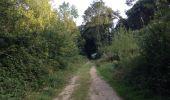 Trail Walk RAISSAC-SUR-LAMPY - Raissac to Villelongue via La Combe Belle - Photo 16