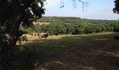 Trail Walk RAISSAC-SUR-LAMPY - Raissac to Villelongue via La Combe Belle - Photo 4