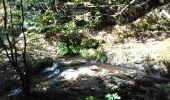 Trail Walk AUBAZINES - Lac du Coiroux, Aubazine, Canal des Moines - Photo 7