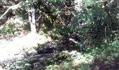 Trail Walk AUBAZINES - Lac du Coiroux, Aubazine, Canal des Moines - Photo 6