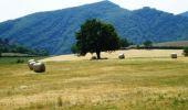 Trail Mountain bike MIRABEAU - Grande Traversée des PréAlpes à VTT : Mirabeau - La Jasse - Photo 2
