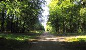 Randonnée Marche PIERREFONDS - en forêt de Compiègne_20_le Beaudon_bois de Damart_la Héronnière_bois du Bourgot - Photo 99