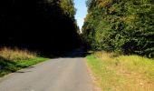 Randonnée Marche PIERREFONDS - en forêt de Compiègne_20_le Beaudon_bois de Damart_la Héronnière_bois du Bourgot - Photo 114