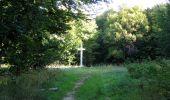 Randonnée Marche PIERREFONDS - en forêt de Compiègne_20_le Beaudon_bois de Damart_la Héronnière_bois du Bourgot - Photo 95