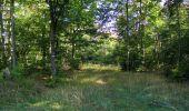 Randonnée Marche PIERREFONDS - en forêt de Compiègne_20_le Beaudon_bois de Damart_la Héronnière_bois du Bourgot - Photo 83