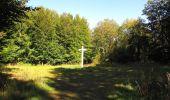 Randonnée Marche PIERREFONDS - en forêt de Compiègne_20_le Beaudon_bois de Damart_la Héronnière_bois du Bourgot - Photo 91