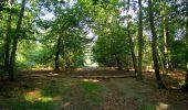 Randonnée Marche PIERREFONDS - en forêt de Compiègne_20_le Beaudon_bois de Damart_la Héronnière_bois du Bourgot - Photo 61