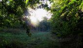Randonnée Marche PIERREFONDS - en forêt de Compiègne_20_le Beaudon_bois de Damart_la Héronnière_bois du Bourgot - Photo 24