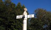 Randonnée Marche PIERREFONDS - en forêt de Compiègne_20_le Beaudon_bois de Damart_la Héronnière_bois du Bourgot - Photo 90