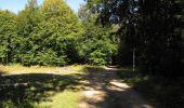 Randonnée Marche PIERREFONDS - en forêt de Compiègne_20_le Beaudon_bois de Damart_la Héronnière_bois du Bourgot - Photo 120